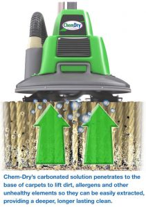 how-the-powerhead-works-to-clean-carpets