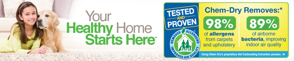 healthy home citywide chem dry